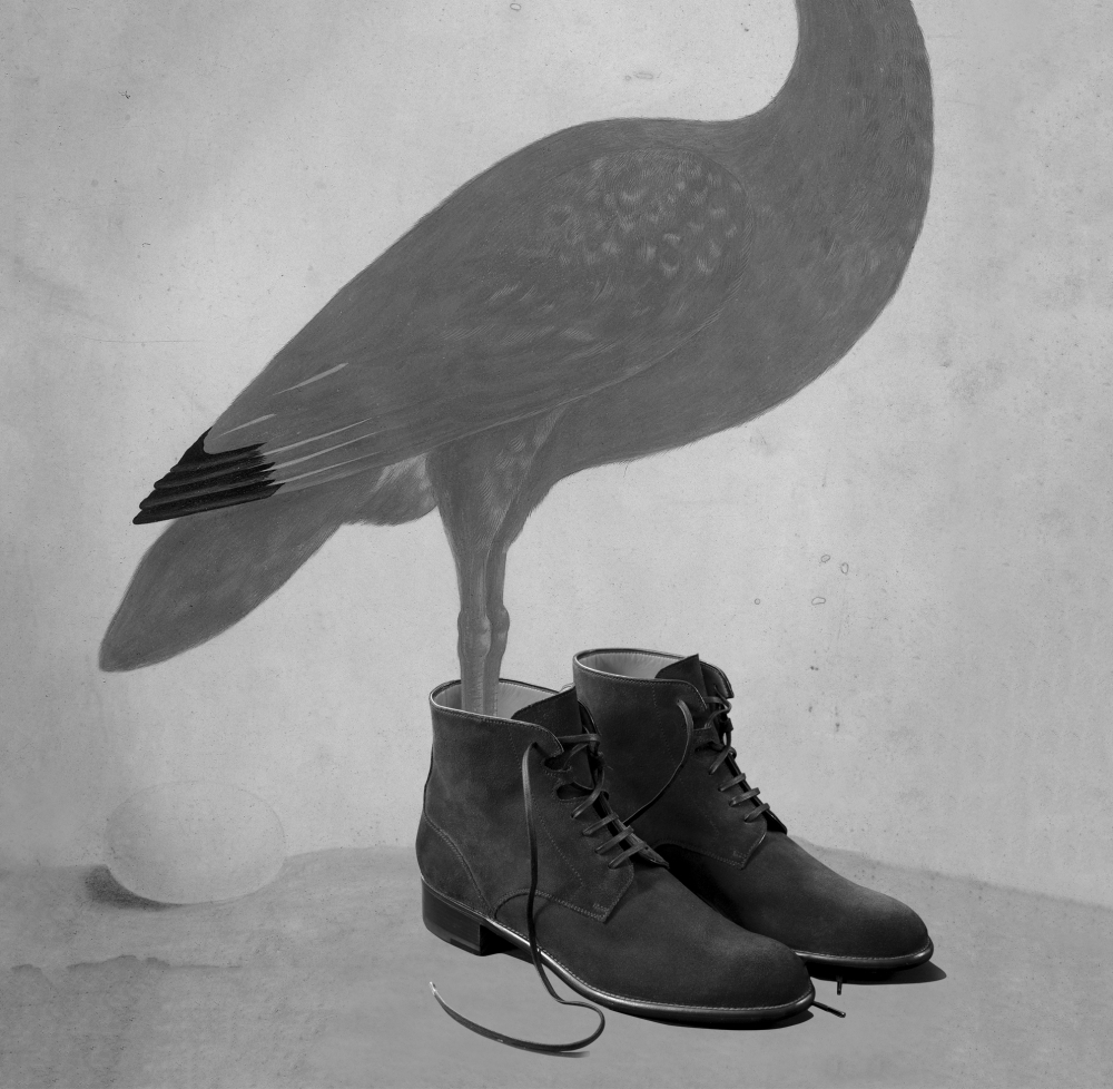 bird-shoes_cropped_2_1000_978_s