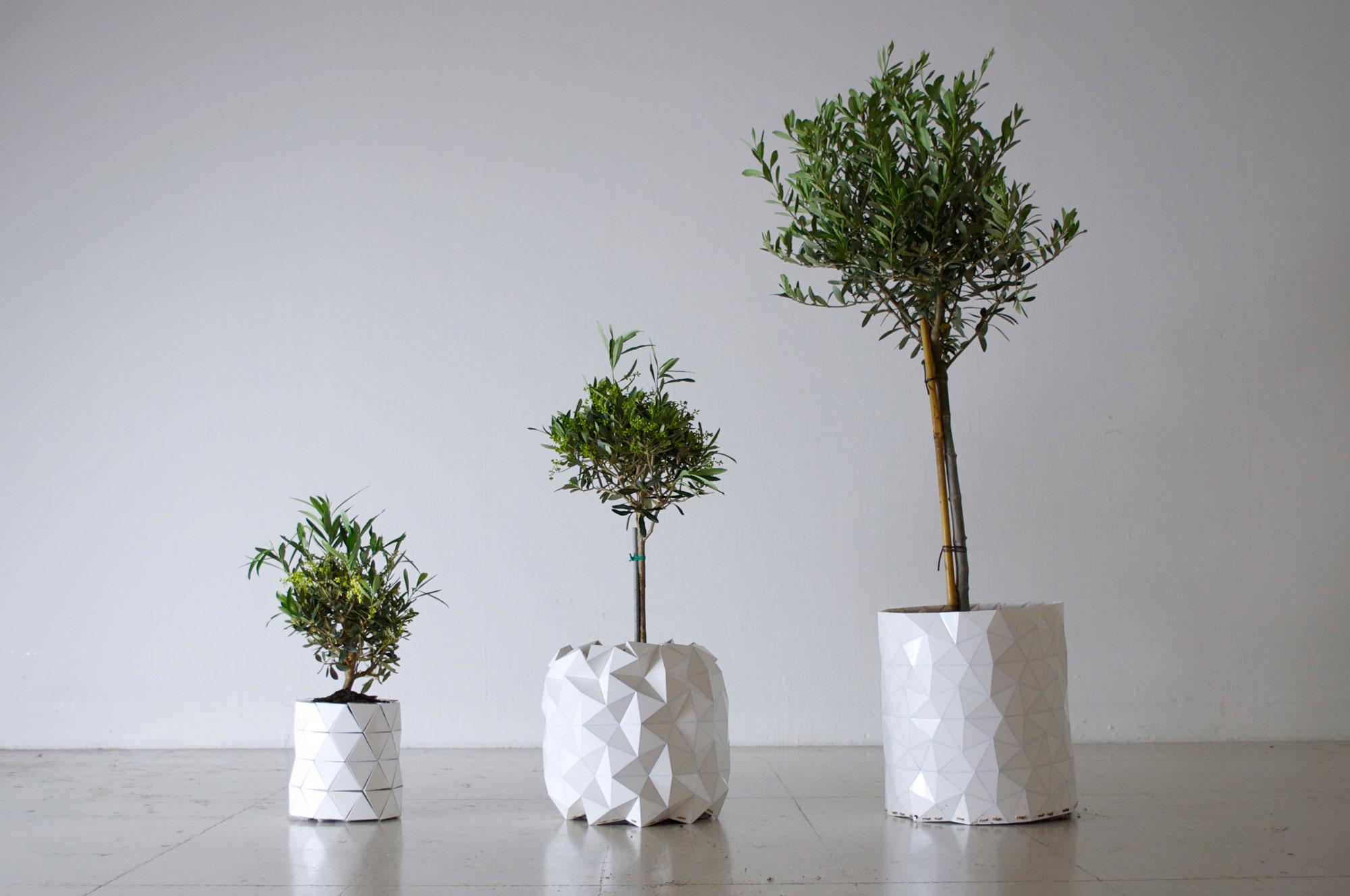 Studio-Ayaskan-Growth-Origami-Planter6